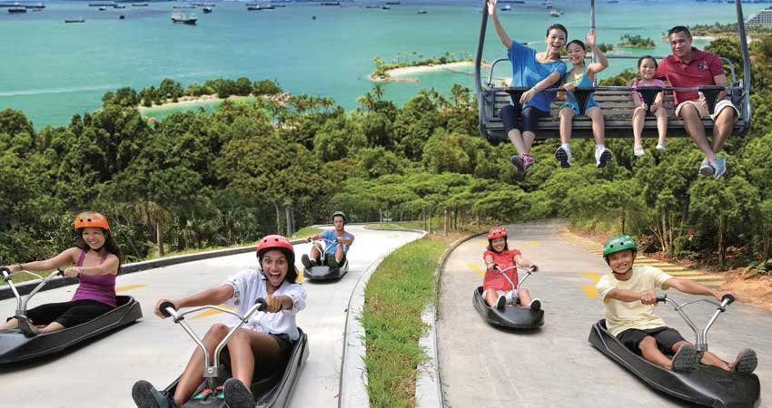 Luge And Sky Ride