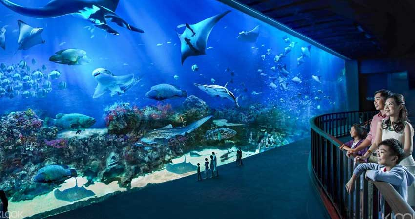 Visit the breathtaking underwater world