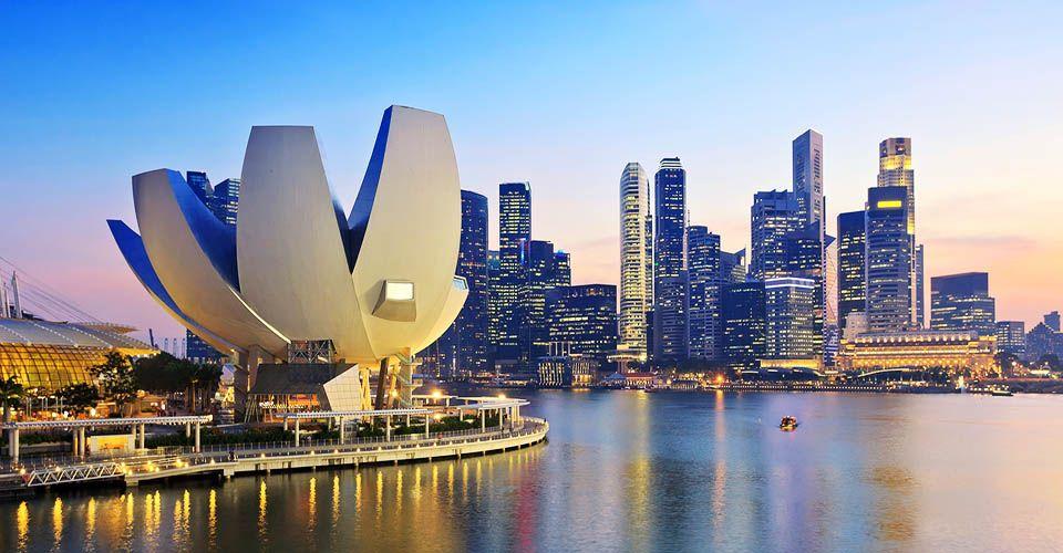 Malaysia Singapore Delight