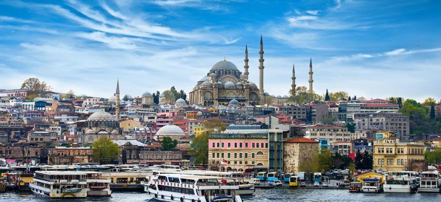 SPECIAL TURKEY