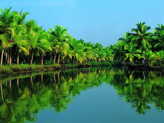 Fascinating Kerala