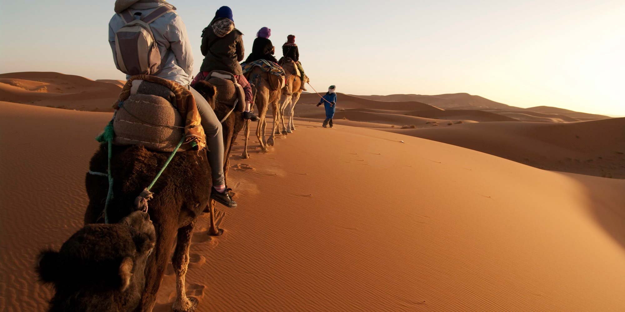 Desert Romance And Camel Safari Tour