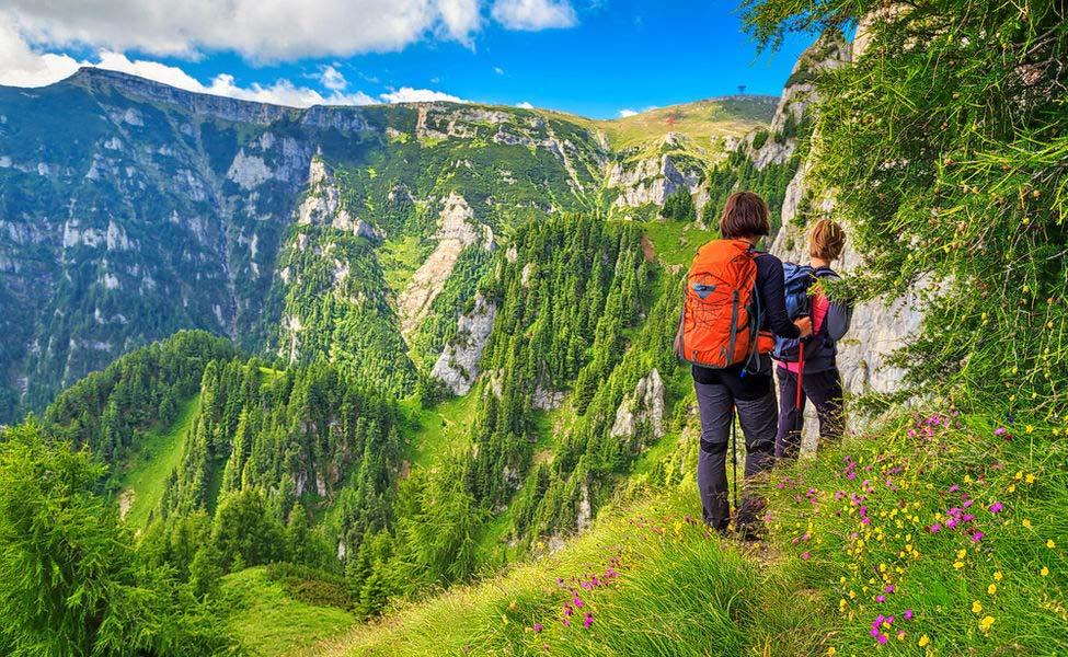 Valley_OF_Flowers_Trekking