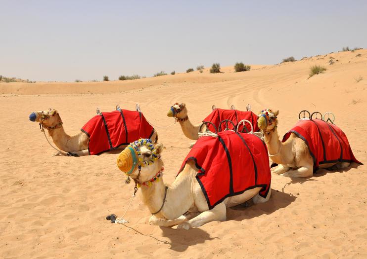 Enthralling Dubai